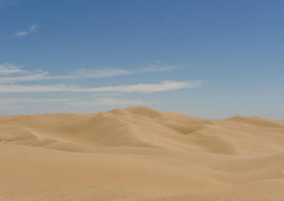 Imperial Sand dunes (1 of 1)